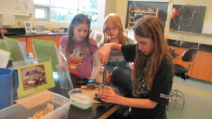 Laura, Madilynne and Brita work on their demonstation. Oil Spill Discovery Lab 2014 010